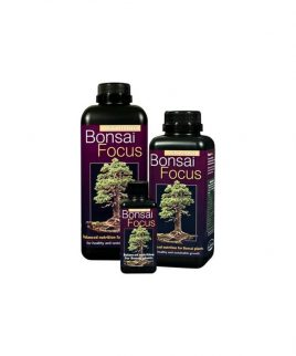 Hydrorobic Grow Shop Online | BONSAI FOCUS 300ML