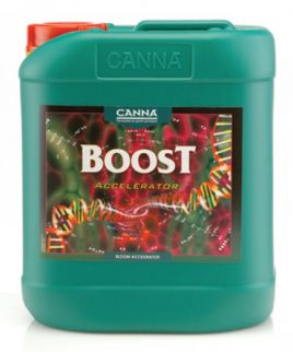 Hydrorobic Grow Shop Online | CANNA BOOST 5L