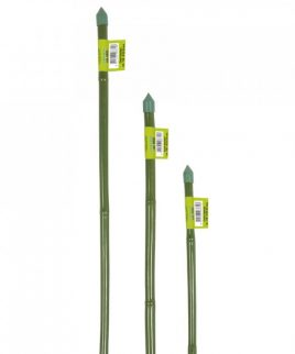 Hydrorobic Grow Shop Online | CANNA BAMBOO PLASTIFICATO H 120cm. D 10-12 VERDE